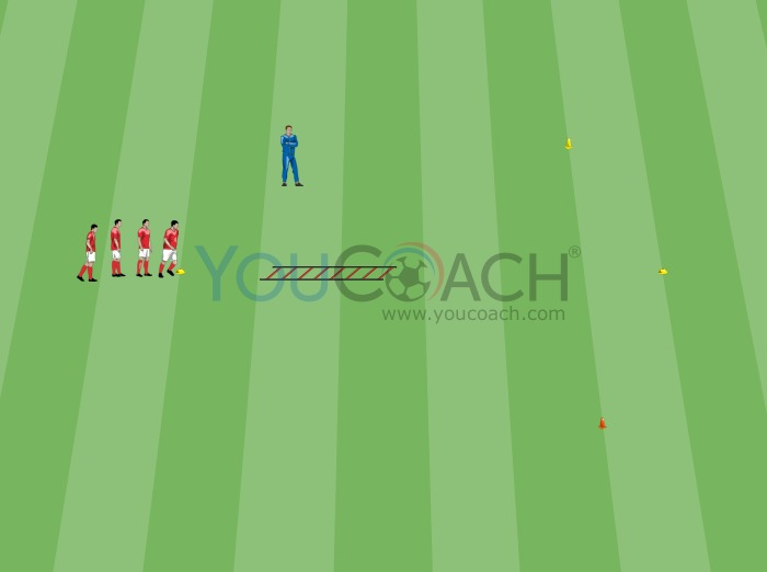 Quickness and cognitive ability with the speed ladder